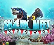 SharkMeet